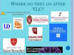 where do they go after ylc