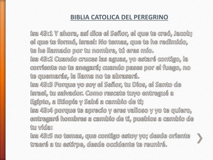 BIBLIA CATOLICA DEL PEREGRINO
