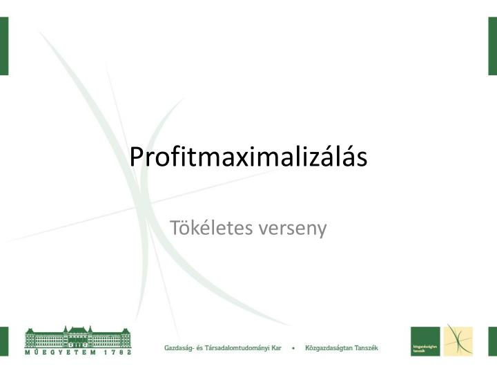 Profitmaximalizls