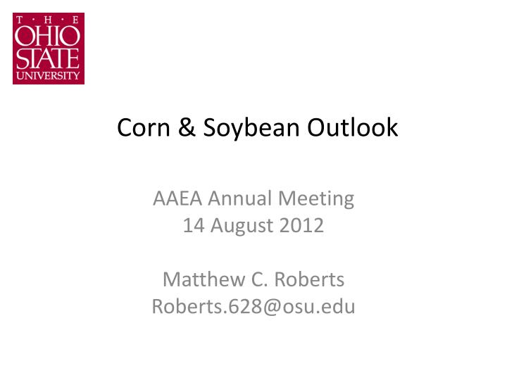 Corn soybean outlook