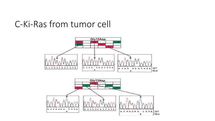 C-Ki-Ras from tumor cell