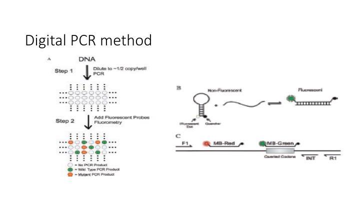 Digital PCR method