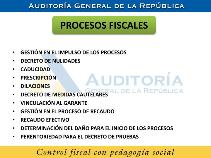 PROCESOS FISCALES
