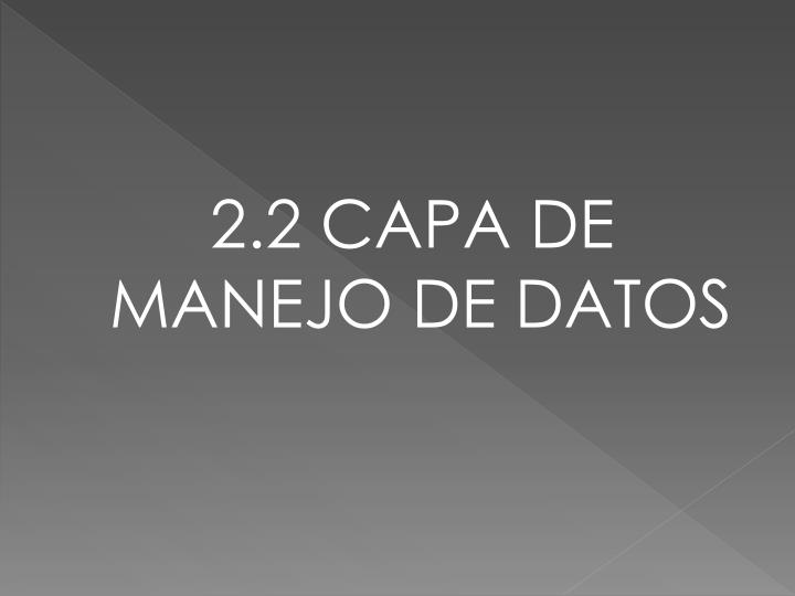 2.2 CAPA DE MANEJO DE DATOS