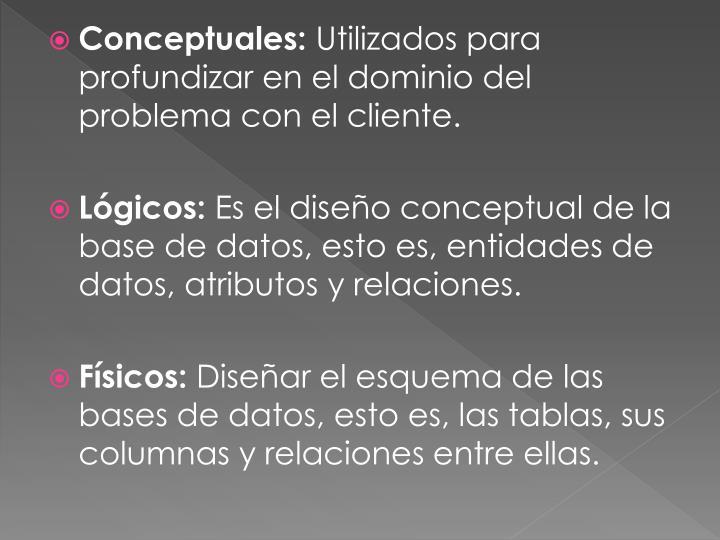 Conceptuales: