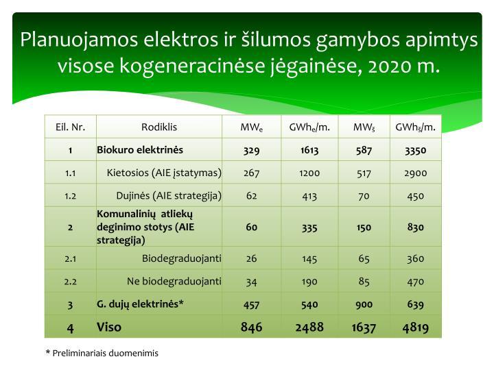 Planuojamos elektros ir šilumos gamybos