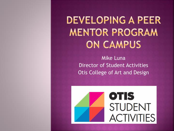 Developing a peer mentor program on campus