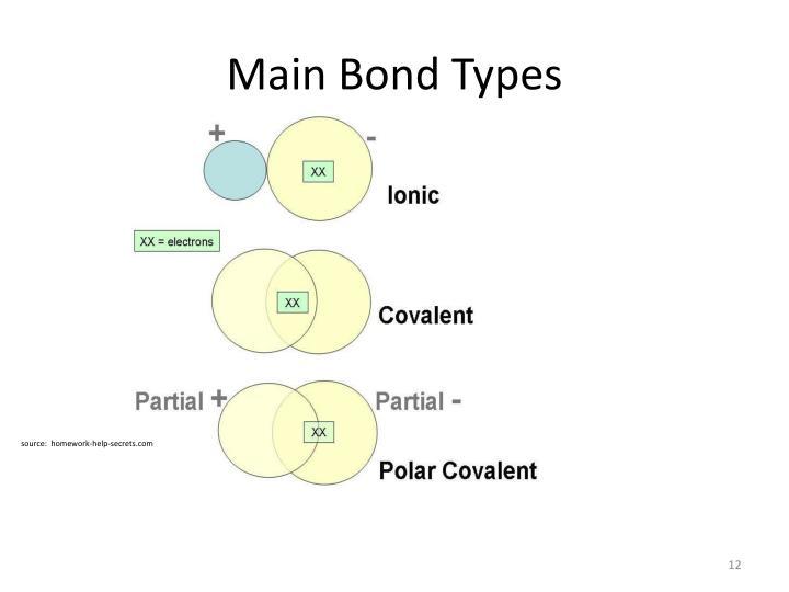 Main Bond Types