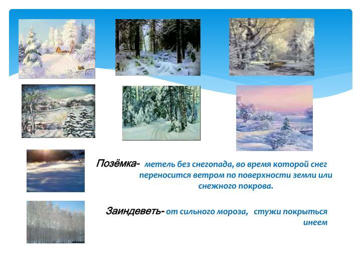 метель без снегопада, во время которой снег         переносится ветром по поверхности земли или снежного покрова.