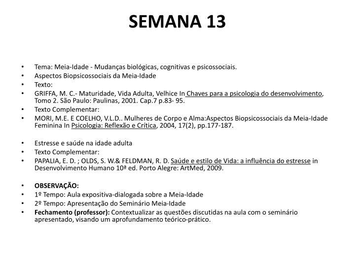 SEMANA 13