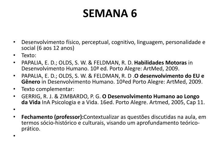 SEMANA 6