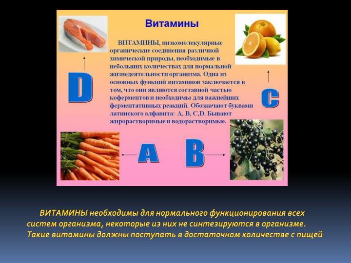 ВИТАМИНЫ необходимы для нормального функционирования всех систем организма, некоторые из них не синтезируются в организме. Такие витамины должны поступать в достаточном количестве с пищей