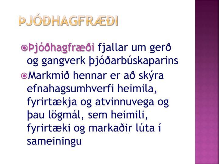 Þjóðhagfræði