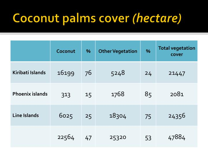 Coconut palms cover