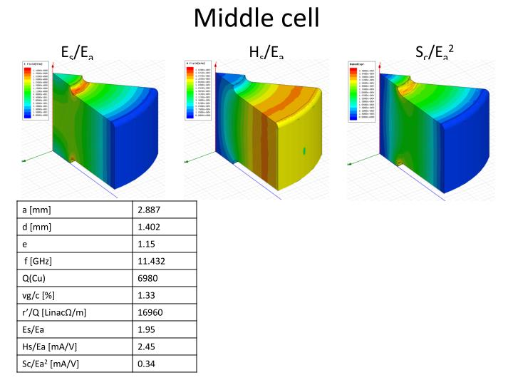 Middle cell