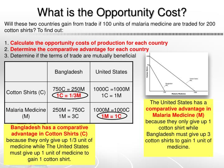 What is the Opportunity Cost?