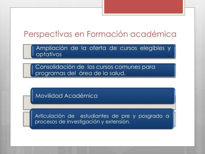 Perspectivas en Formación académica
