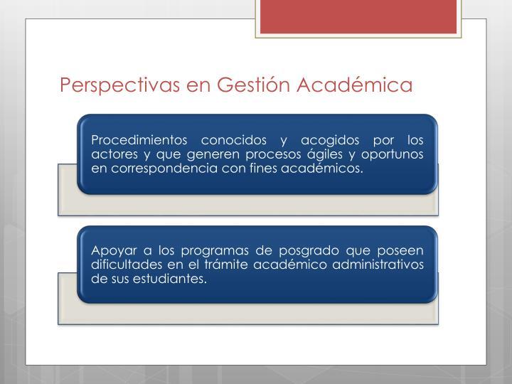 Perspectivas en Gestión Académica