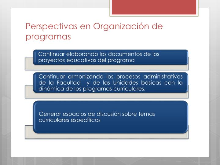 Perspectivas en Organización de programas