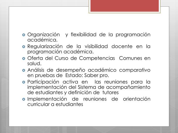 Organización  y flexibilidad de la programación académica.