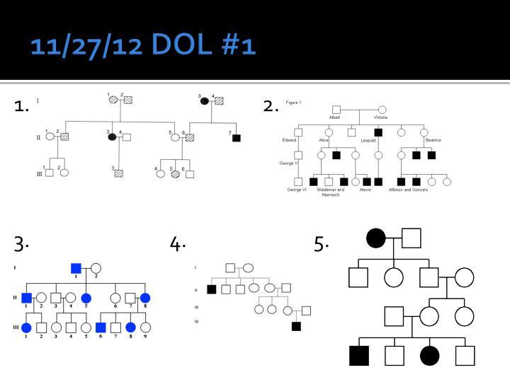 11/27/12 DOL #1