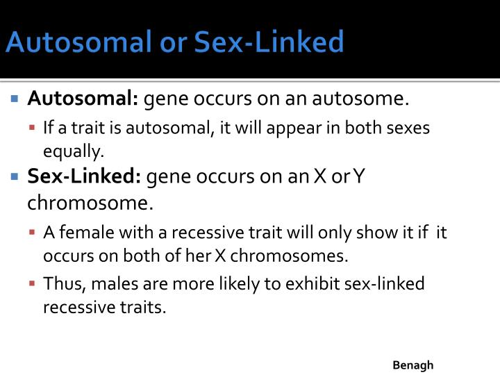 Autosomal or Sex-Linked