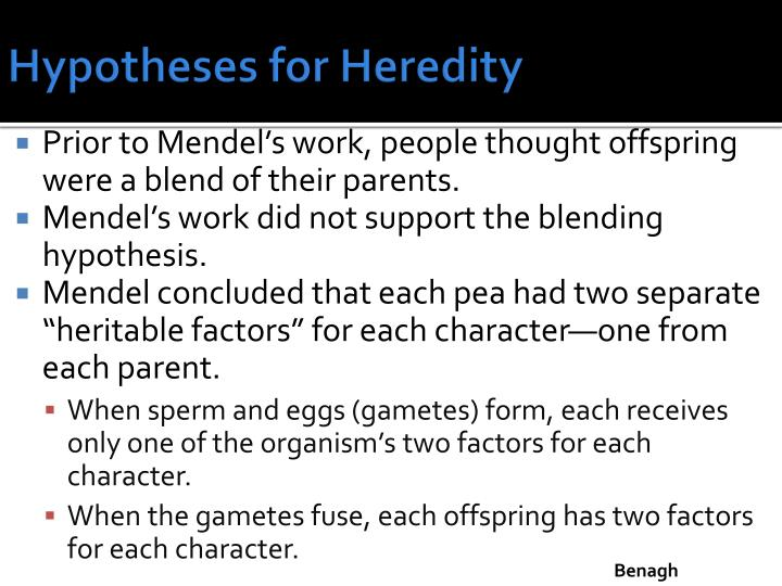 Hypotheses for Heredity