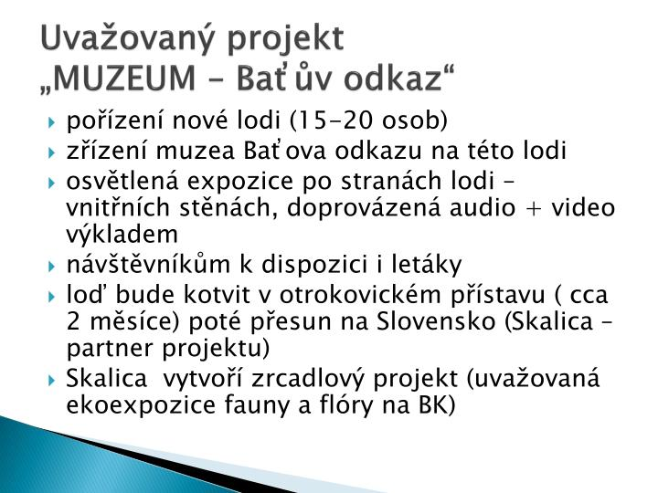 Uvažovaný projekt