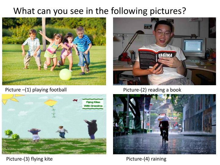 What can you see in the following pictures?