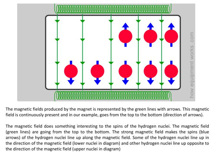 The magnetic fields produced by the magnet is represented by the green lines with arrows. This magnetic field is continuously present and in our example, goes from the top to the bottom (direction of arrows