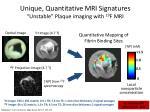 unique quantitative mri signatures unstable plaque imaging with 19 f mri