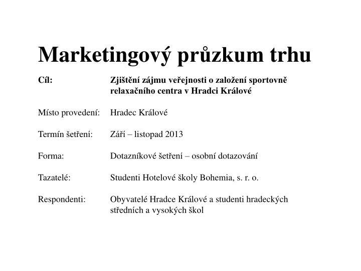 Marketingový průzkum trhu
