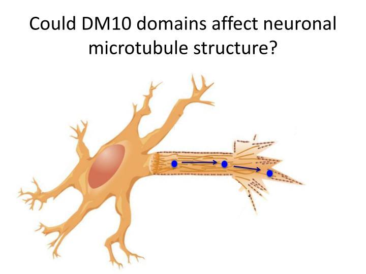 Could DM10 domains
