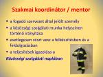 szakmai koordin tor mentor