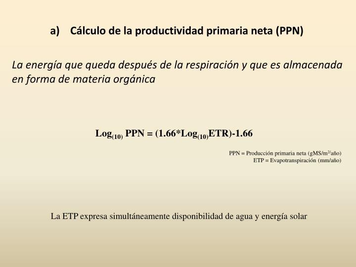Cálculo de la productividad primaria neta (