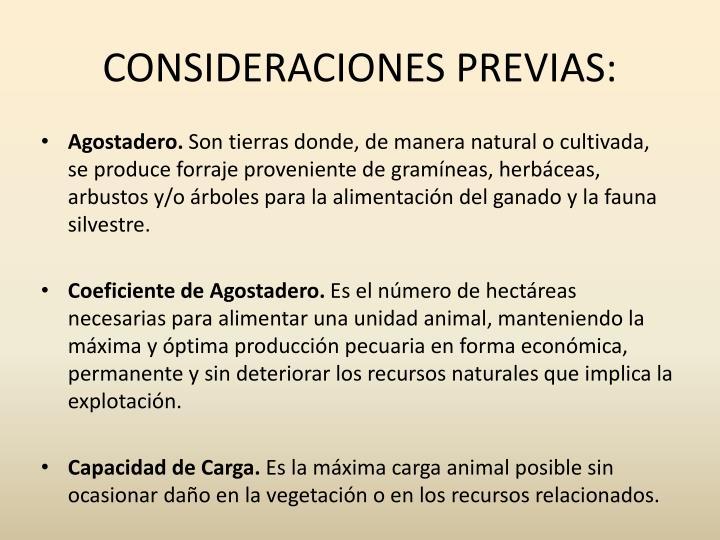 CONSIDERACIONES PREVIAS: