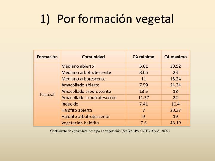 Por formación vegetal