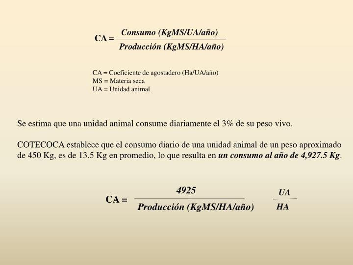 Consumo (