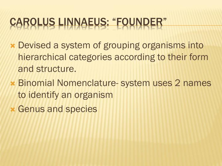 Devised a system of grouping organisms into hierarchical categories according to their form and structure.