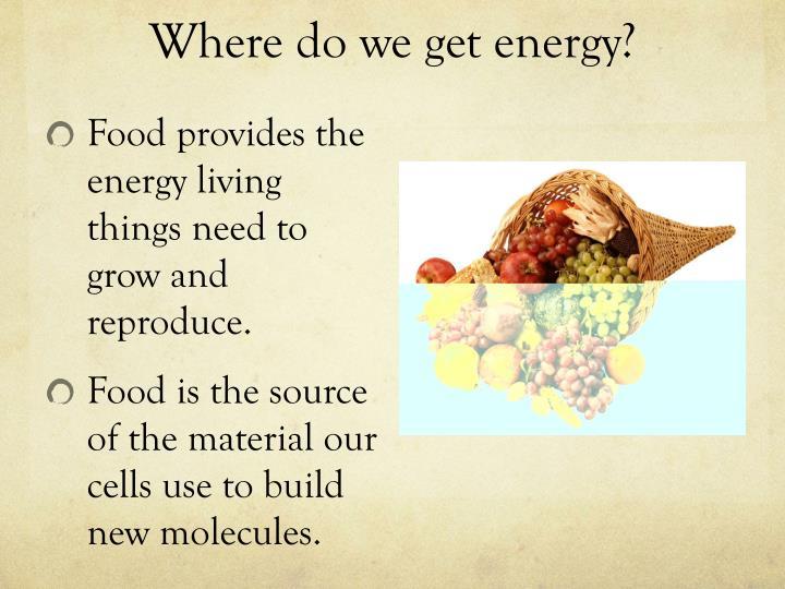 Where do we get energy?