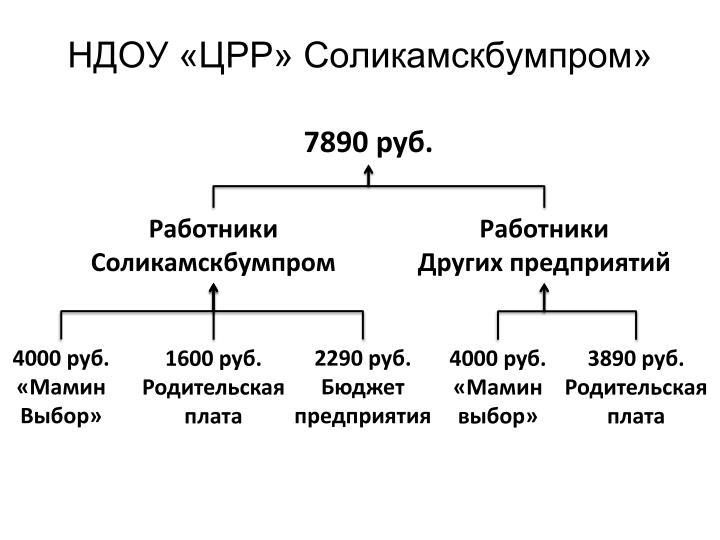 НДОУ «ЦРР» Соликамскбумпром»