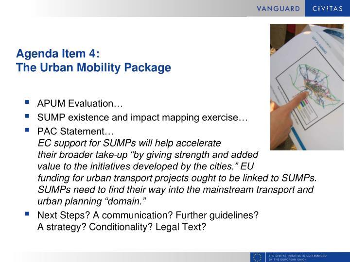 Agenda Item 4:
