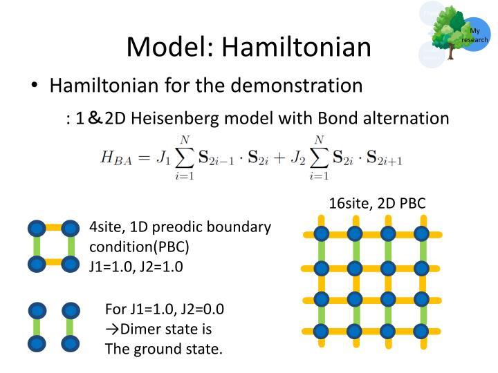 Model: Hamiltonian