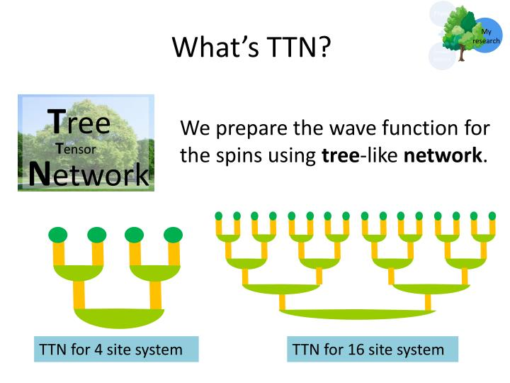 What's TTN?