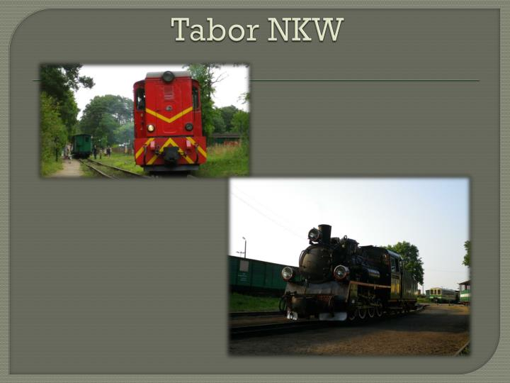Tabor NKW