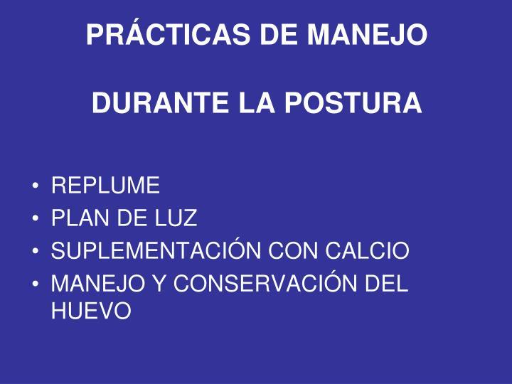 PRÁCTICAS DE MANEJO