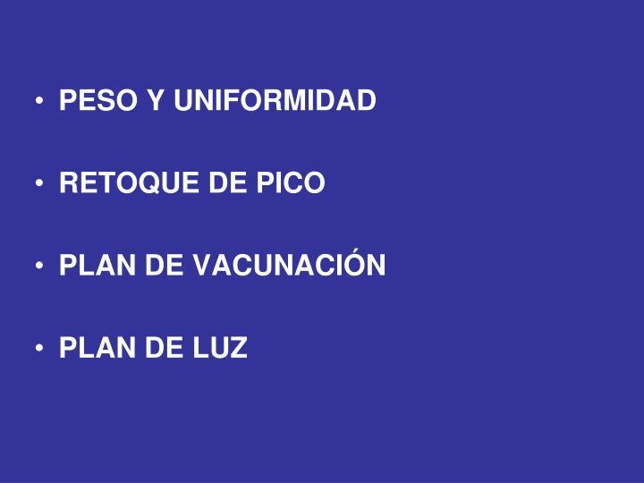 PESO Y UNIFORMIDAD