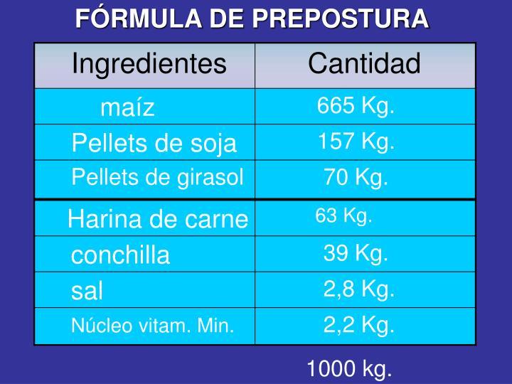 FÓRMULA DE PREPOSTURA