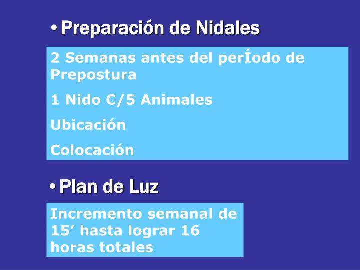 Preparación de Nidales