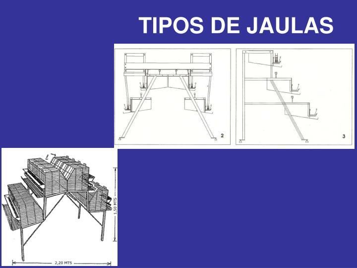 TIPOS DE JAULAS